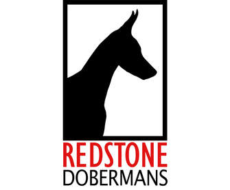 REDSTONE DOBERMANS
